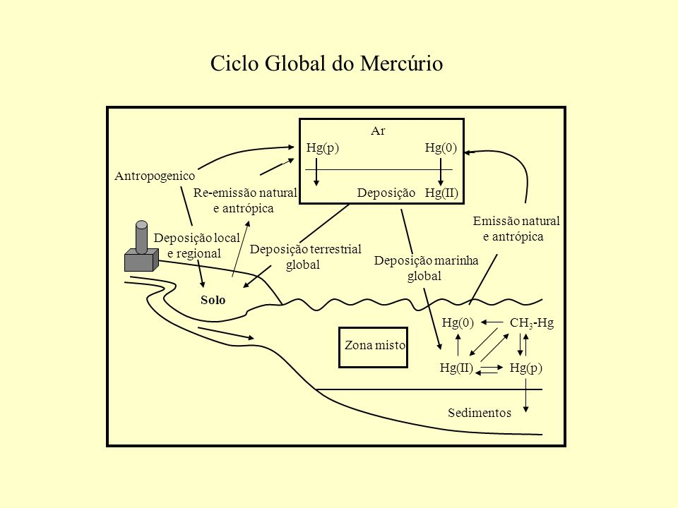 Ciclo Global do Mercúrio