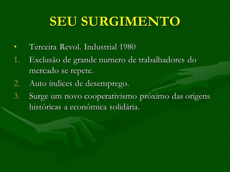SEU SURGIMENTO Terceira Revol. Industrial 1980