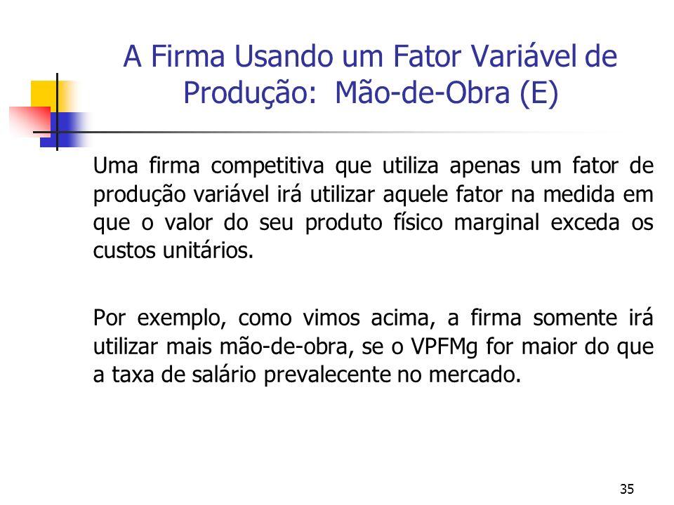 A Firma Usando um Fator Variável de Produção: Mão-de-Obra (E)