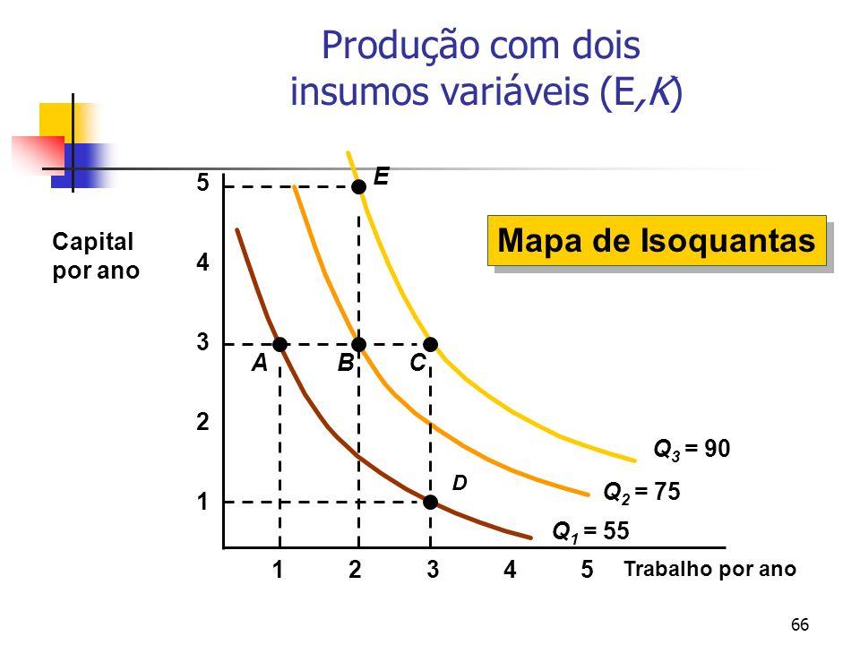 Produção com dois insumos variáveis (E,K)