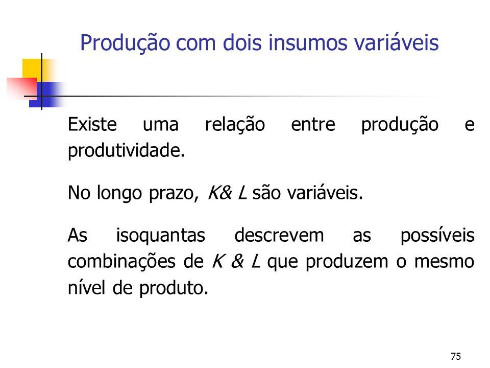 Produção com dois insumos variáveis