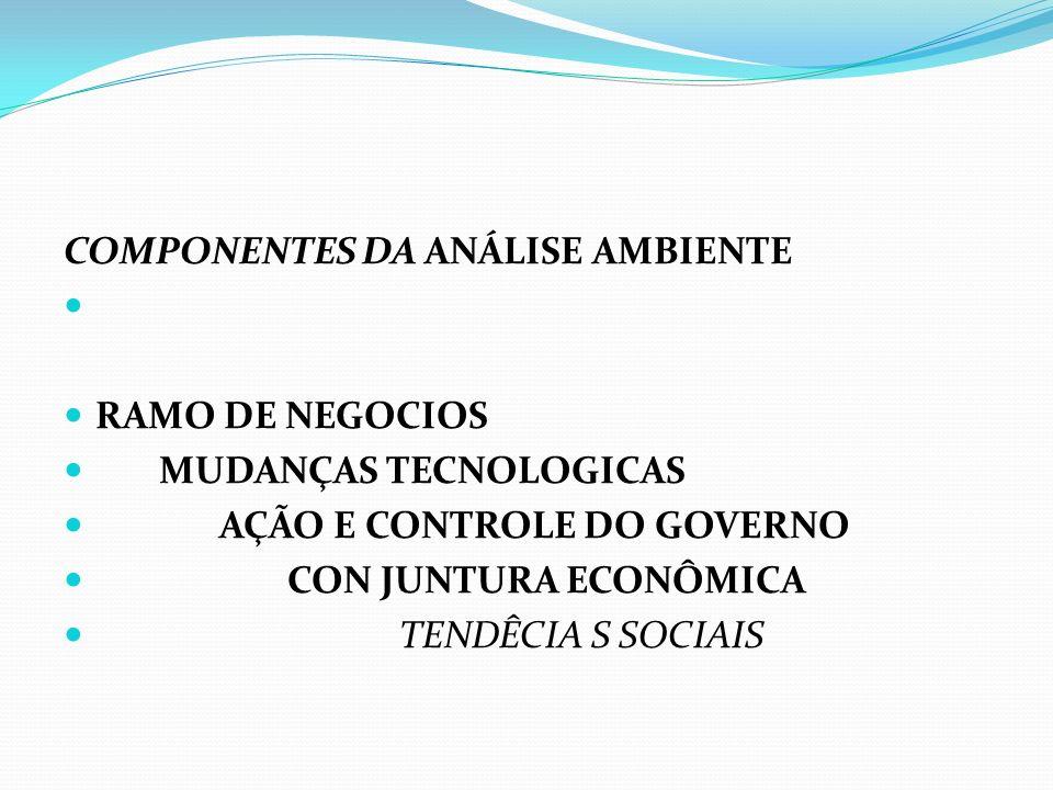 COMPONENTES DA ANÁLISE AMBIENTE