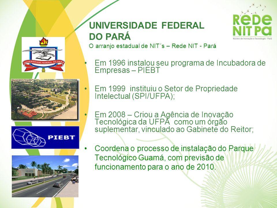 UNIVERSIDADE FEDERAL DO PARÁ O arranjo estadual de NIT´s – Rede NIT - Pará