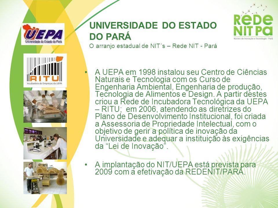 UNIVERSIDADE DO ESTADO DO PARÁ O arranjo estadual de NIT´s – Rede NIT - Pará