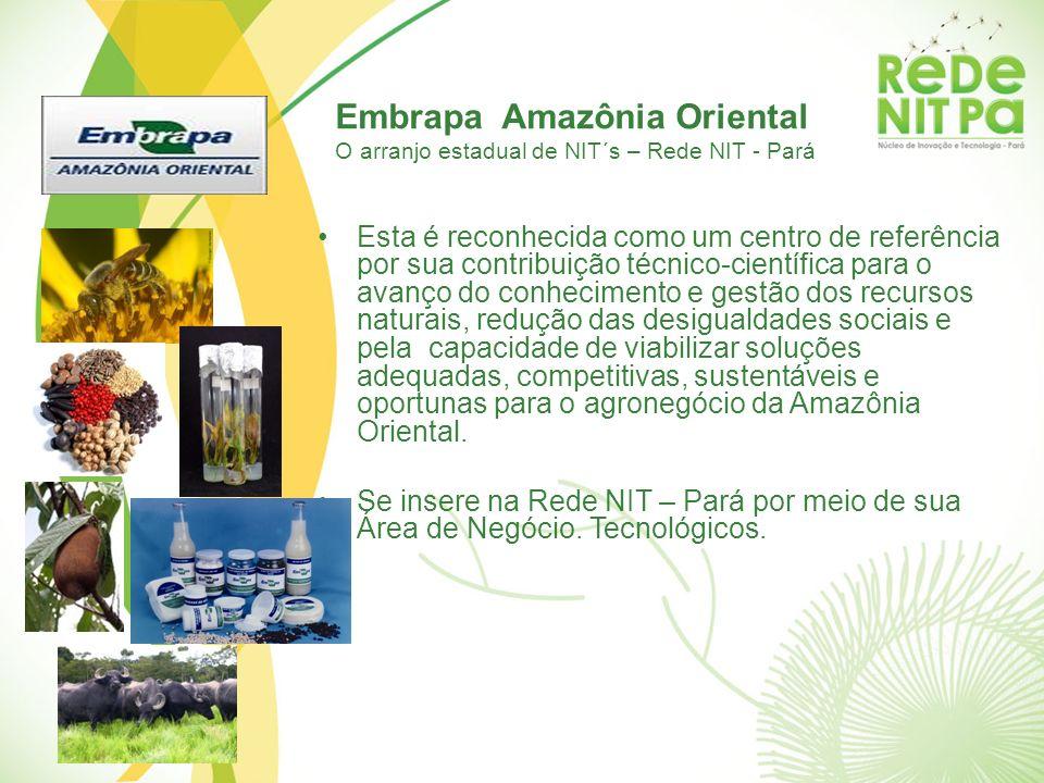 Embrapa Amazônia Oriental O arranjo estadual de NIT´s – Rede NIT - Pará