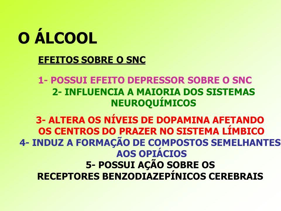 O ÁLCOOL EFEITOS SOBRE O SNC 1- POSSUI EFEITO DEPRESSOR SOBRE O SNC
