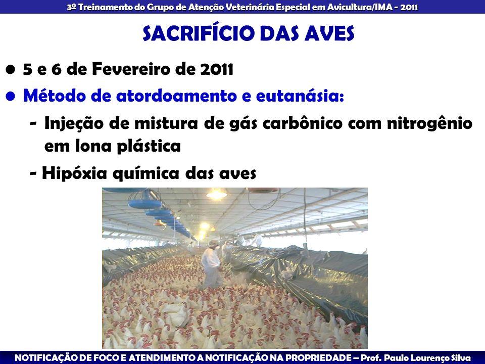SACRIFÍCIO DAS AVES 5 e 6 de Fevereiro de 2011