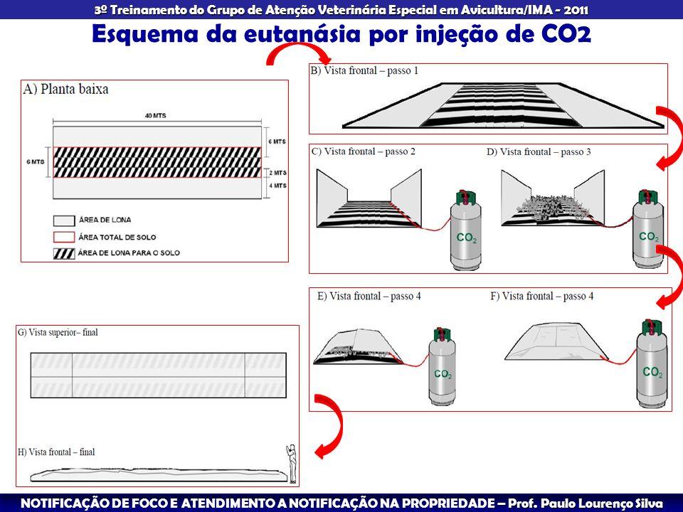 Esquema da eutanásia por injeção de CO2