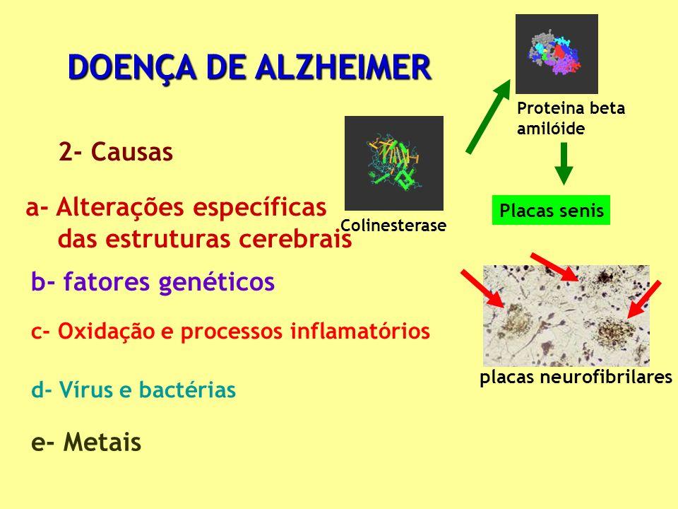 DOENÇA DE ALZHEIMER 2- Causas a- Alterações específicas
