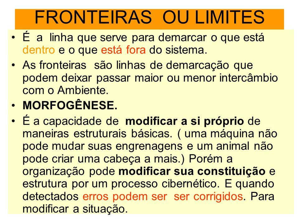 FRONTEIRAS OU LIMITES É a linha que serve para demarcar o que está dentro e o que está fora do sistema.