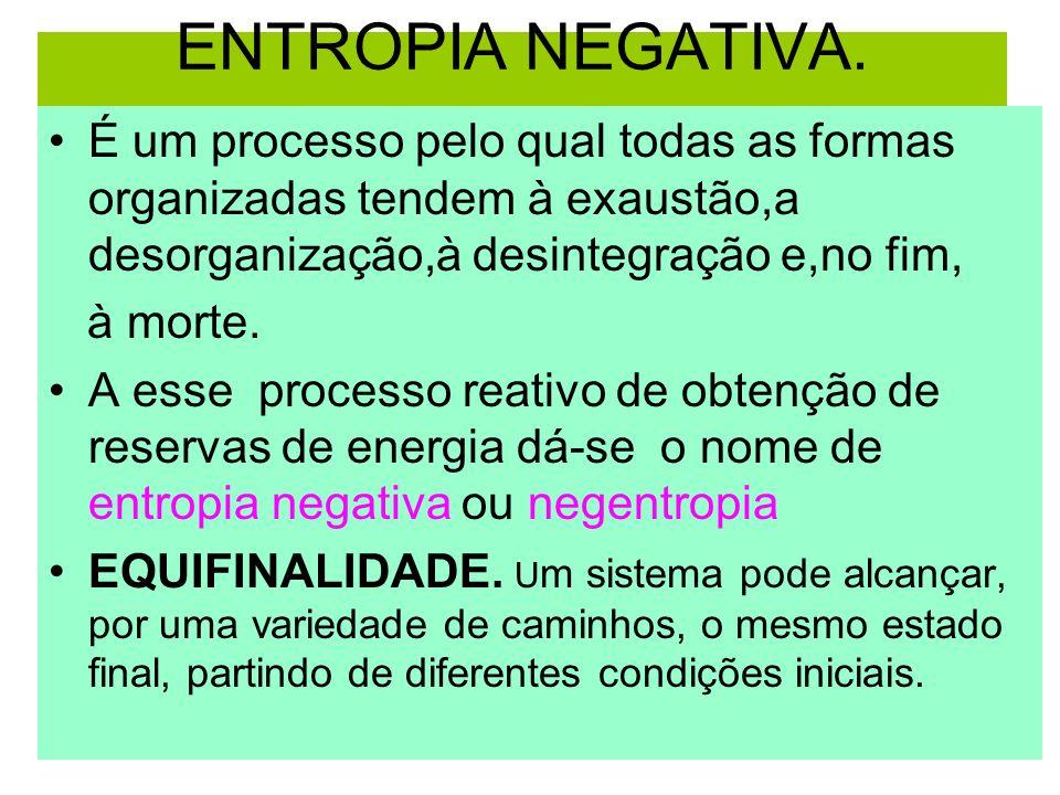 ENTROPIA NEGATIVA. É um processo pelo qual todas as formas organizadas tendem à exaustão,a desorganização,à desintegração e,no fim,