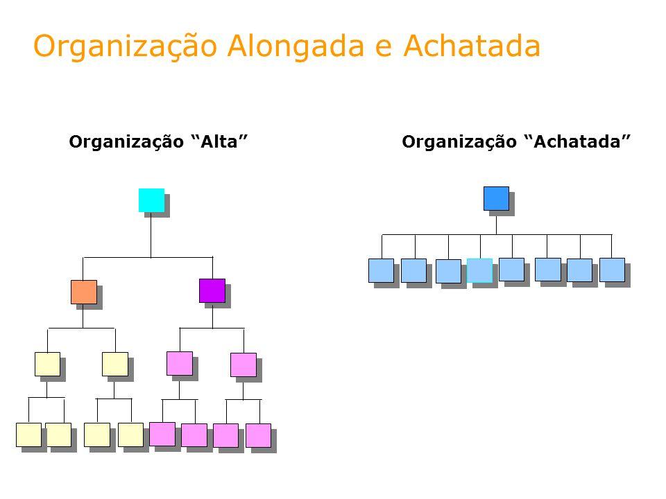 Organização Alongada e Achatada