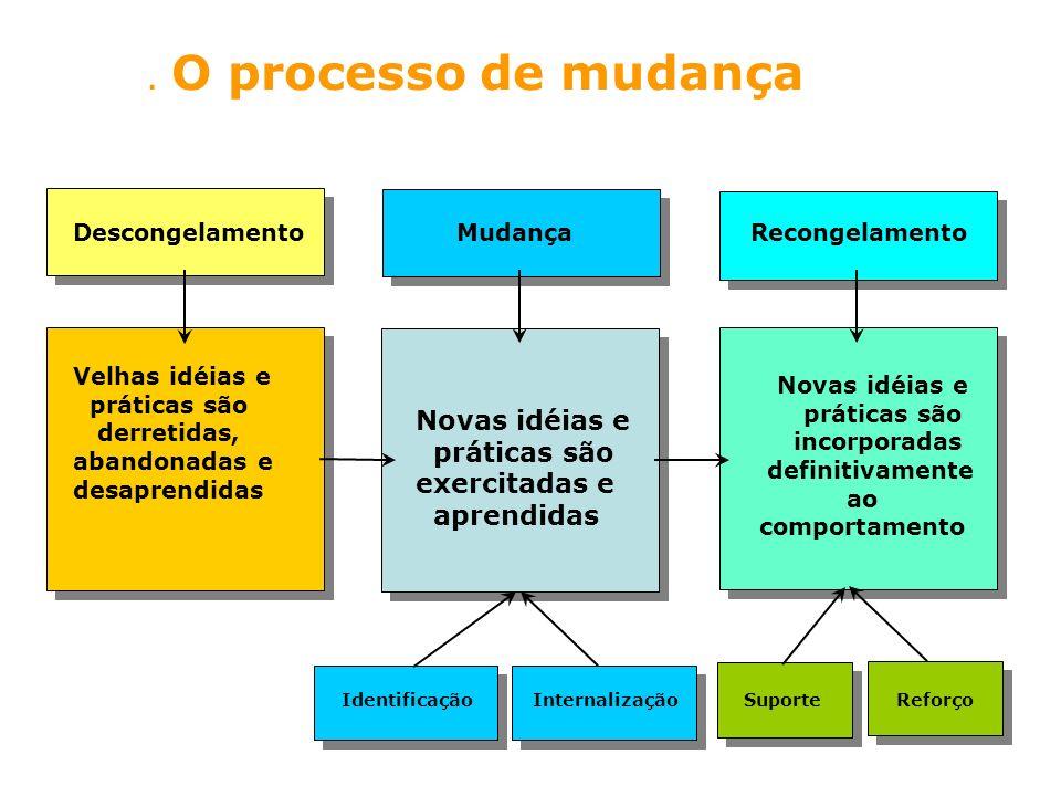 . O processo de mudança Novas idéias e práticas são exercitadas e