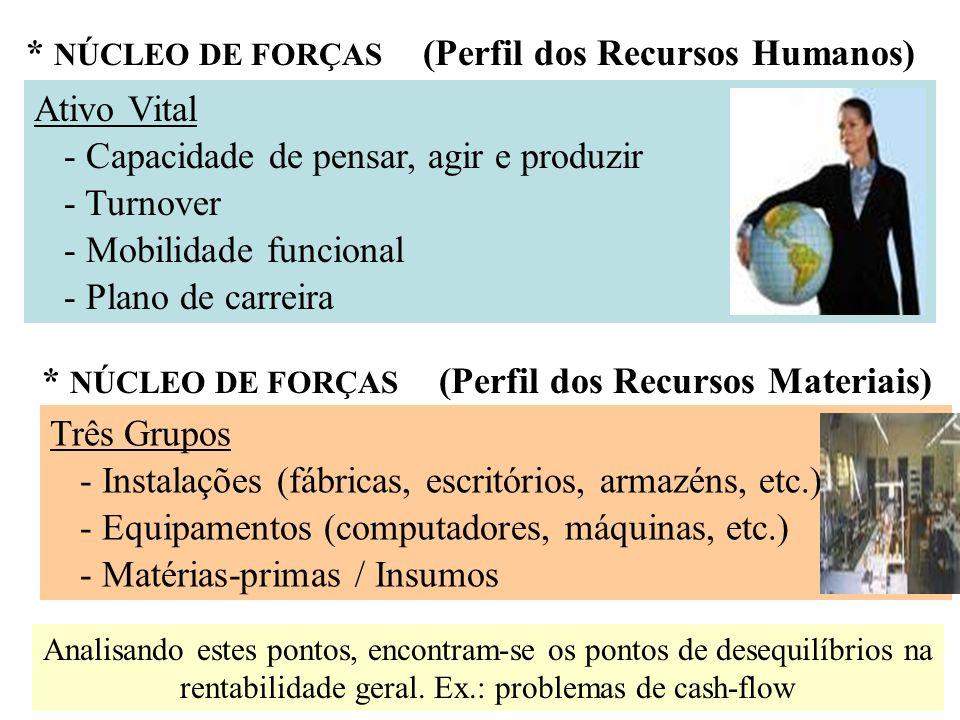 * NÚCLEO DE FORÇAS (Perfil dos Recursos Humanos)