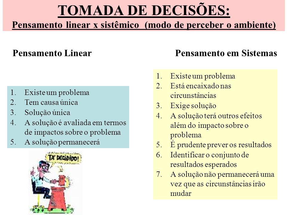 Pensamento linear x sistêmico (modo de perceber o ambiente)