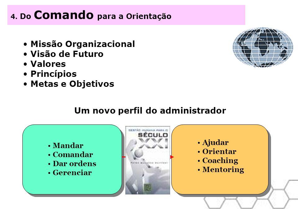 Missão Organizacional Visão de Futuro Valores Princípios