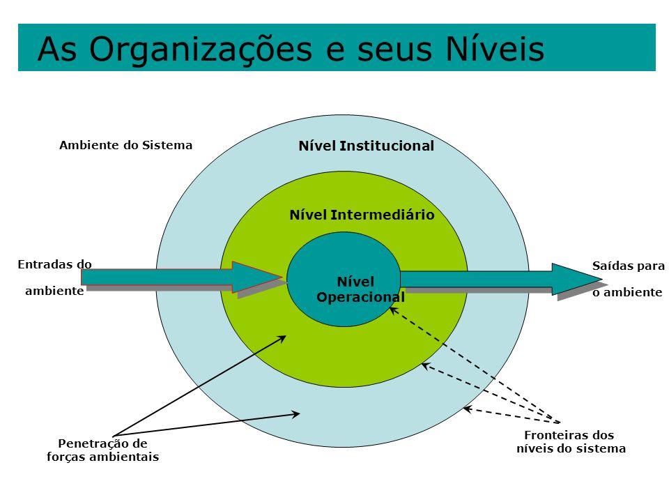 As Organizações e seus Níveis