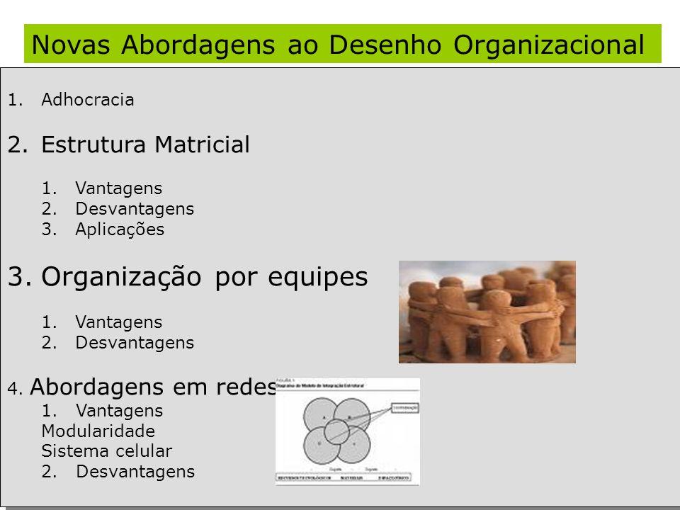 Novas Abordagens ao Desenho Organizacional