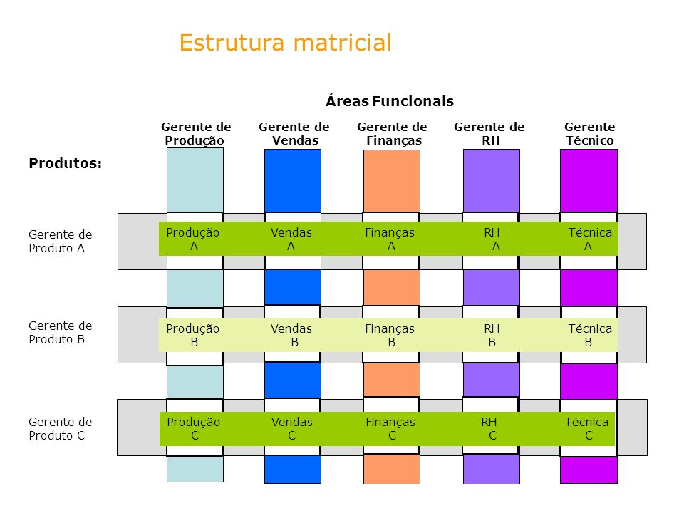Estrutura matricial Áreas Funcionais Produtos: