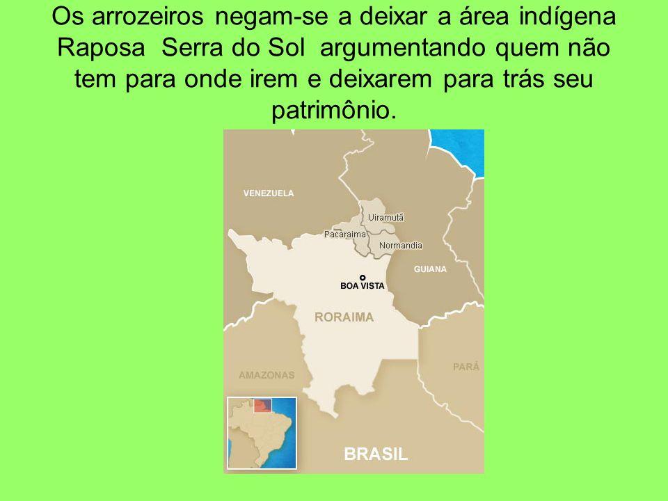 Os arrozeiros negam-se a deixar a área indígena Raposa Serra do Sol argumentando quem não tem para onde irem e deixarem para trás seu patrimônio.
