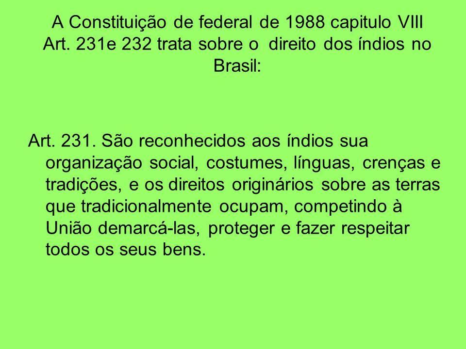 A Constituição de federal de 1988 capitulo VIII Art