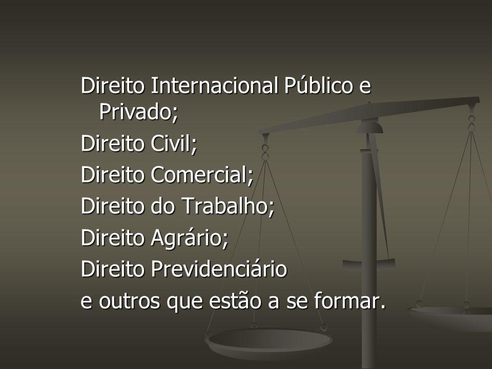 Direito Internacional Público e Privado;
