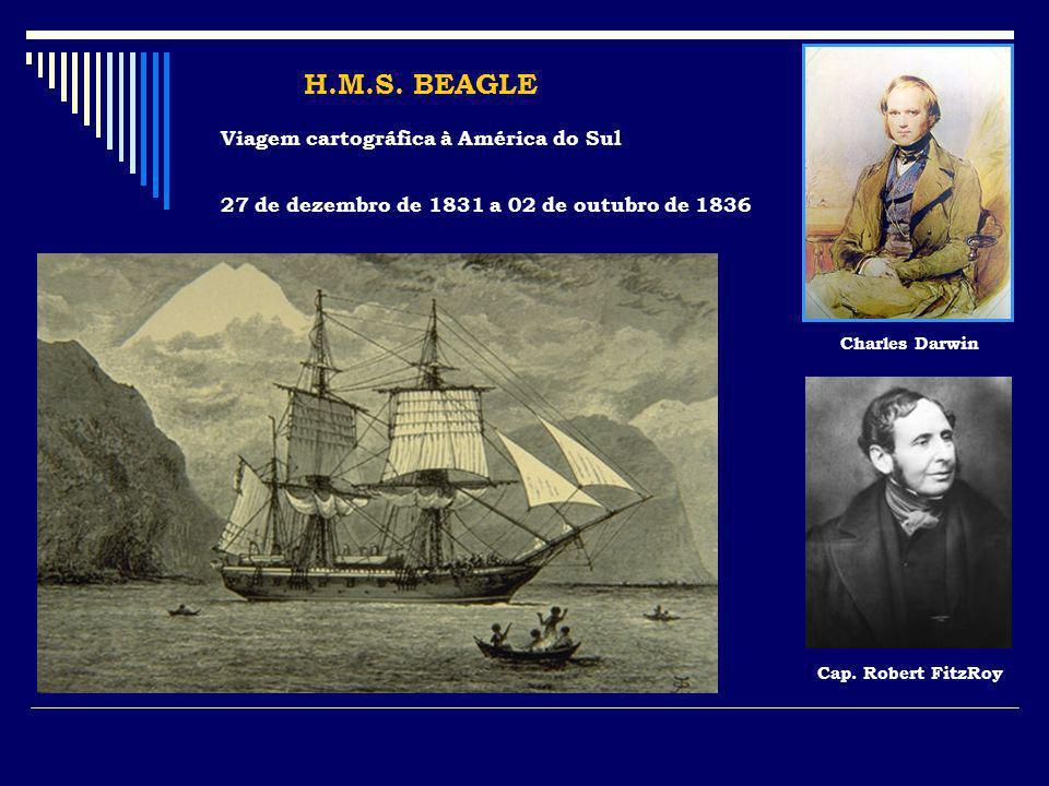 H.M.S. BEAGLE Viagem cartográfica à América do Sul