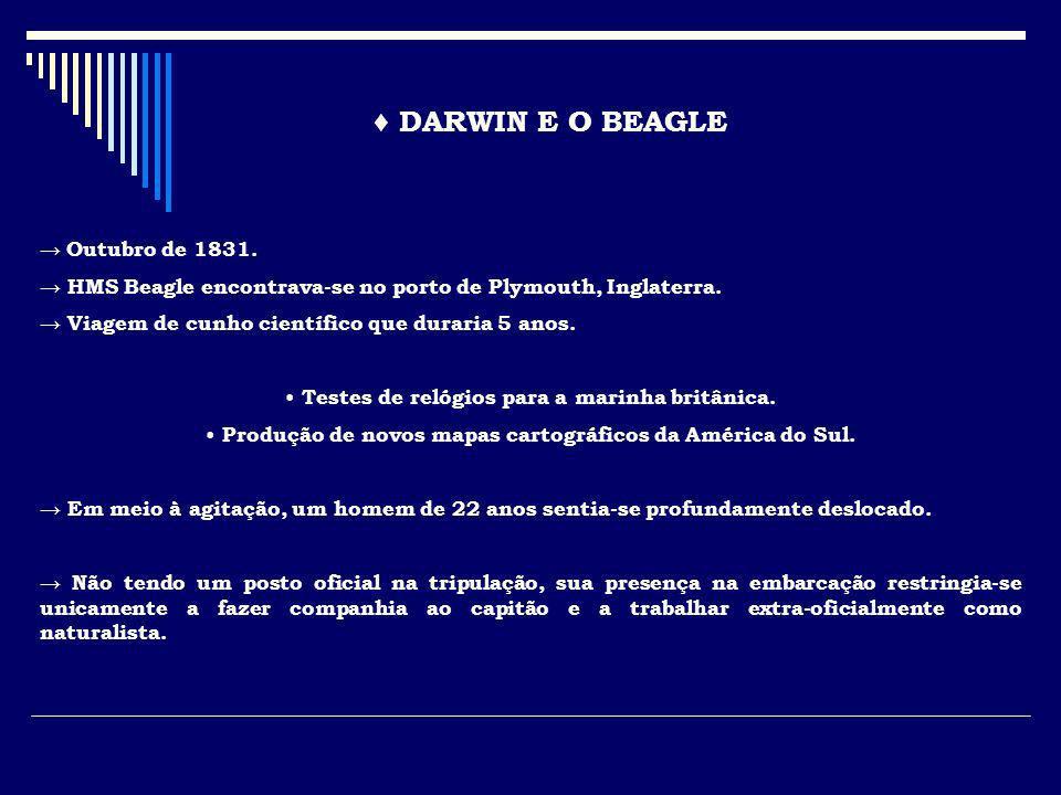 ♦ DARWIN E O BEAGLE → Outubro de 1831.
