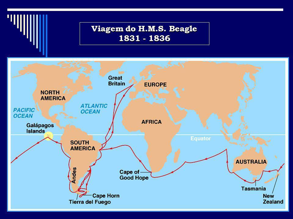 Viagem do H.M.S. Beagle 1831 - 1836