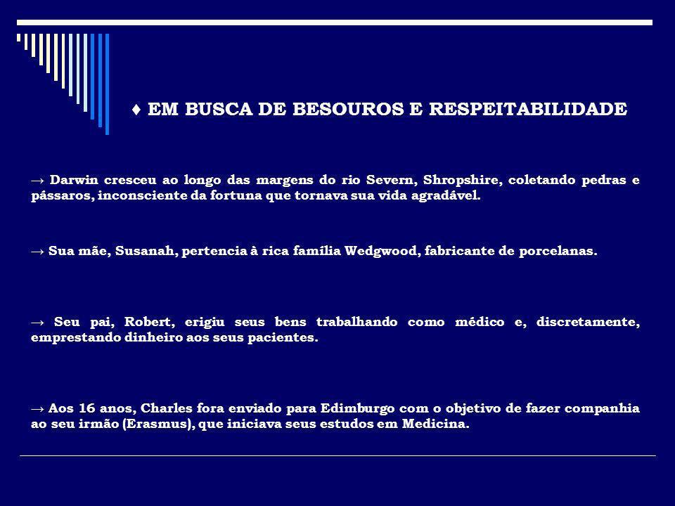 ♦ EM BUSCA DE BESOUROS E RESPEITABILIDADE