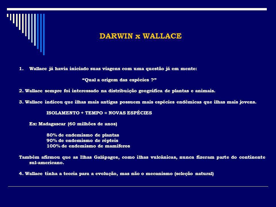 DARWIN x WALLACE Wallace já havia iniciado suas viagens com uma questão já em mente: Qual a origem das espécies
