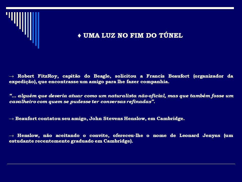 ♦ UMA LUZ NO FIM DO TÚNEL