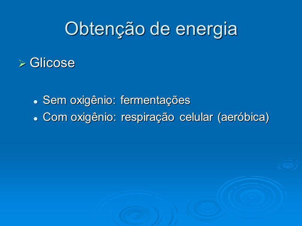 Obtenção de energia Glicose Sem oxigênio: fermentações