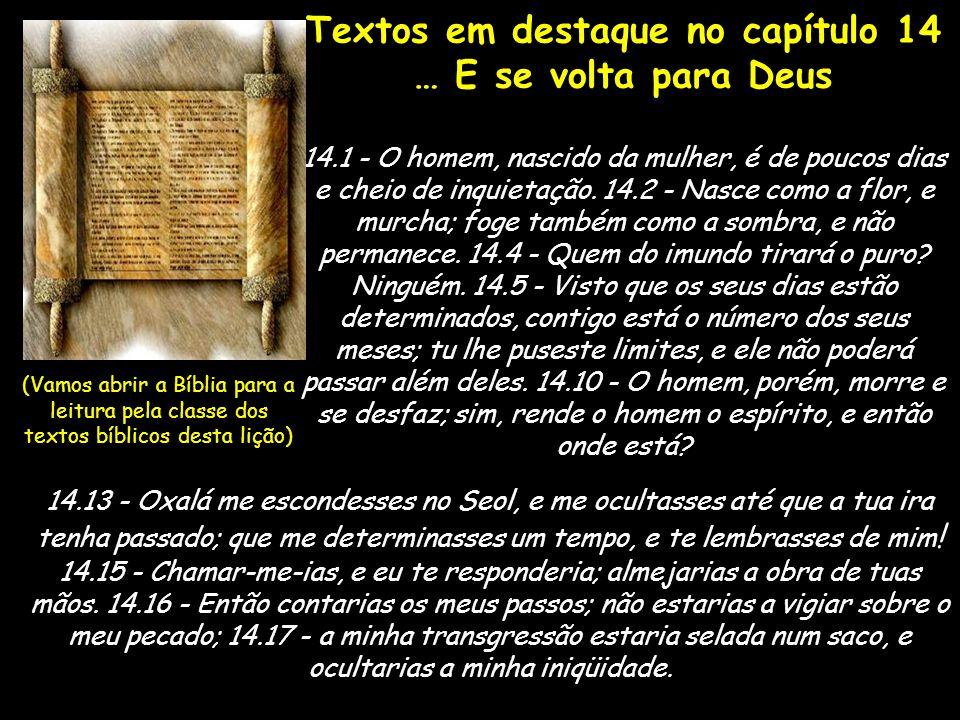 Textos em destaque no capítulo 14
