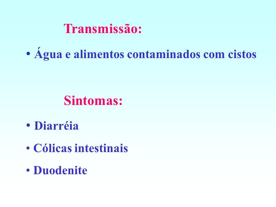 Água e alimentos contaminados com cistos