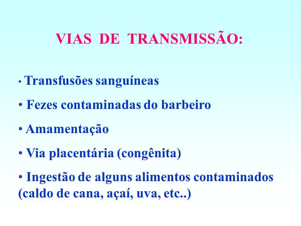 VIAS DE TRANSMISSÃO: Fezes contaminadas do barbeiro Amamentação