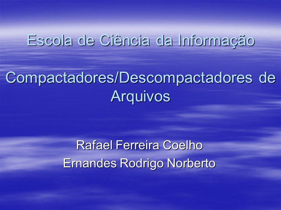 Rafael Ferreira Coelho Ernandes Rodrigo Norberto