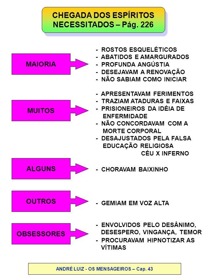 ANDRÉ LUIZ - OS MENSAGEIROS – Cap. 43
