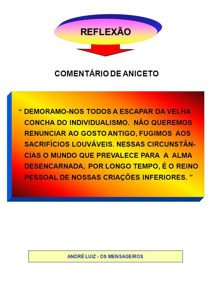 ANDRÉ LUIZ - OS MENSAGEIROS