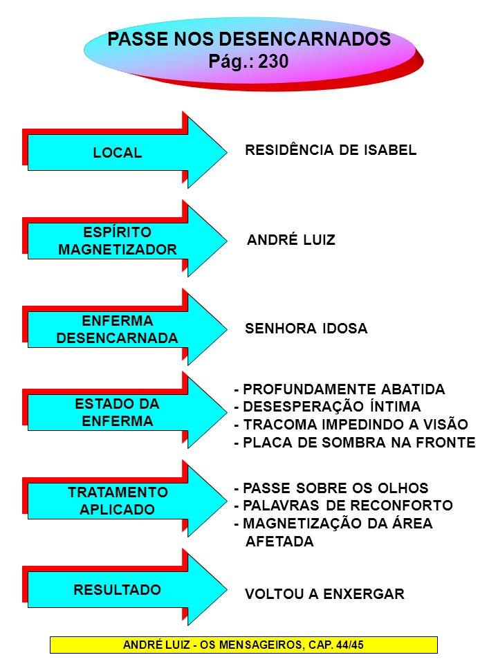 PASSE NOS DESENCARNADOS ANDRÉ LUIZ - OS MENSAGEIROS, CAP. 44/45
