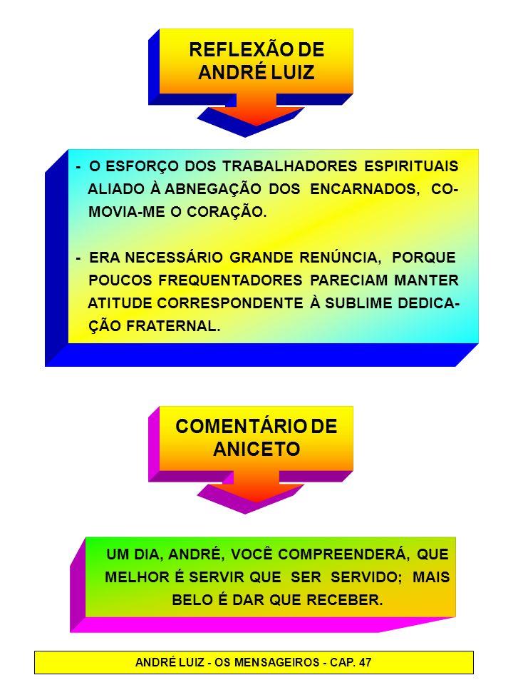 REFLEXÃO DE ANDRÉ LUIZ COMENTÁRIO DE ANICETO