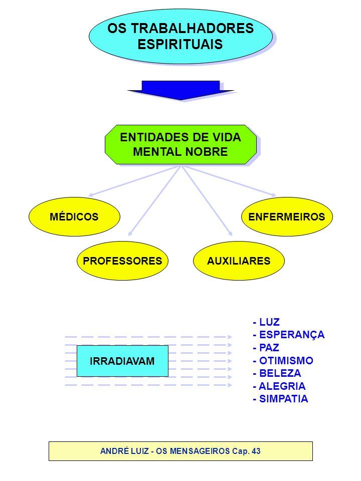 ANDRÉ LUIZ - OS MENSAGEIROS Cap. 43