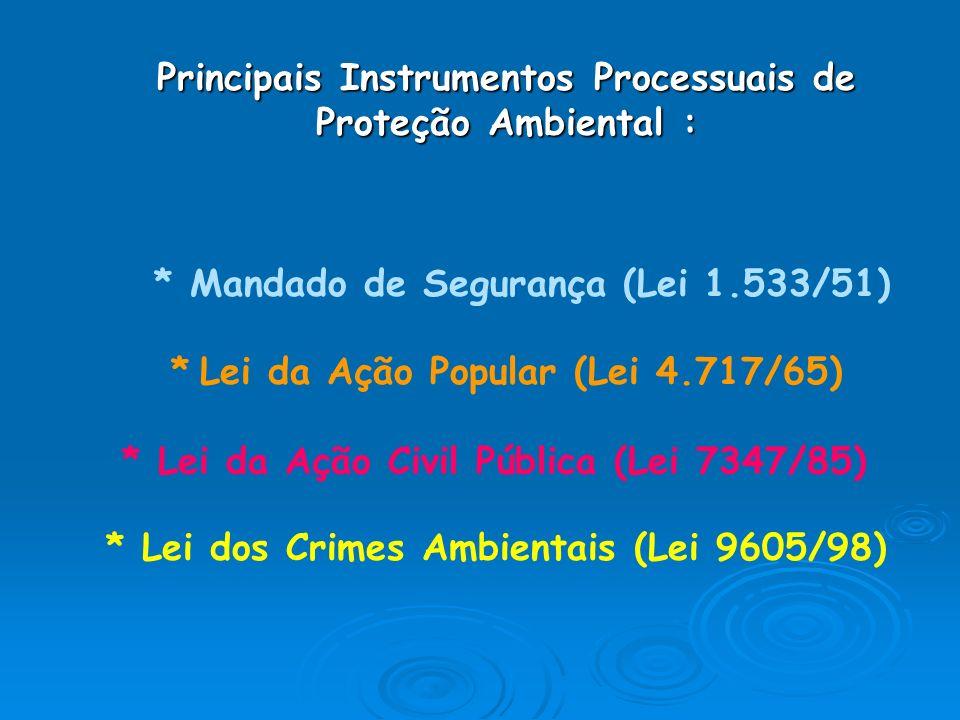 Principais Instrumentos Processuais de Proteção Ambiental :