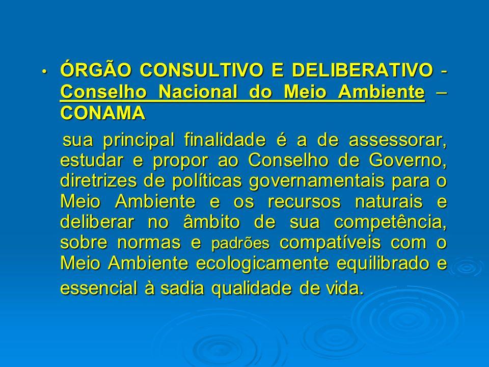 ÓRGÃO CONSULTIVO E DELIBERATIVO - Conselho Nacional do Meio Ambiente – CONAMA