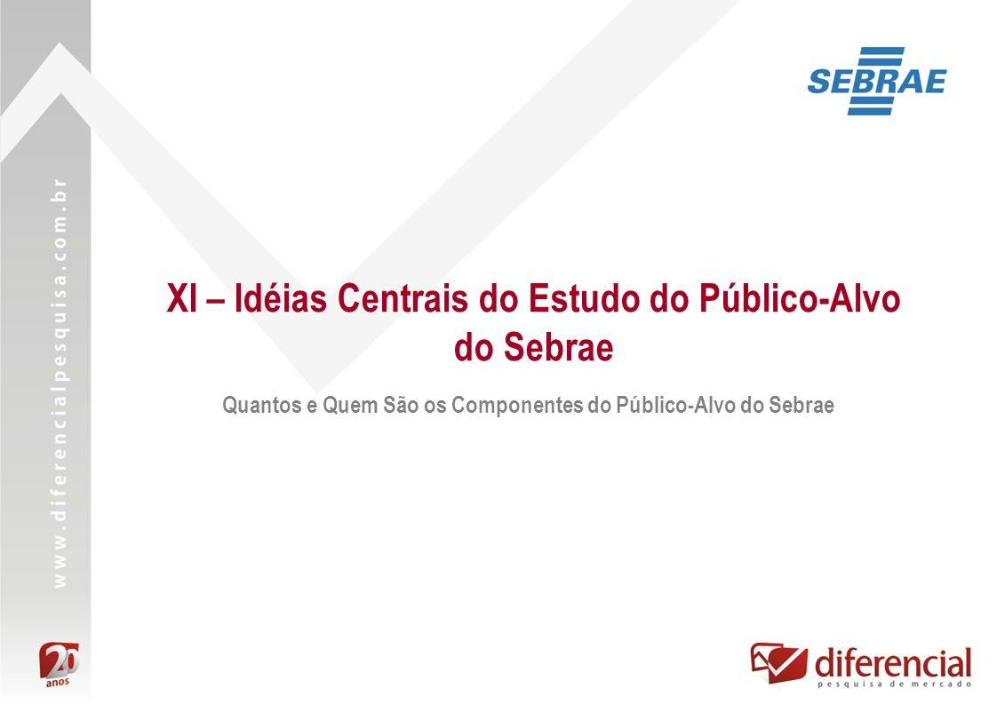XI – Idéias Centrais do Estudo do Público-Alvo do Sebrae