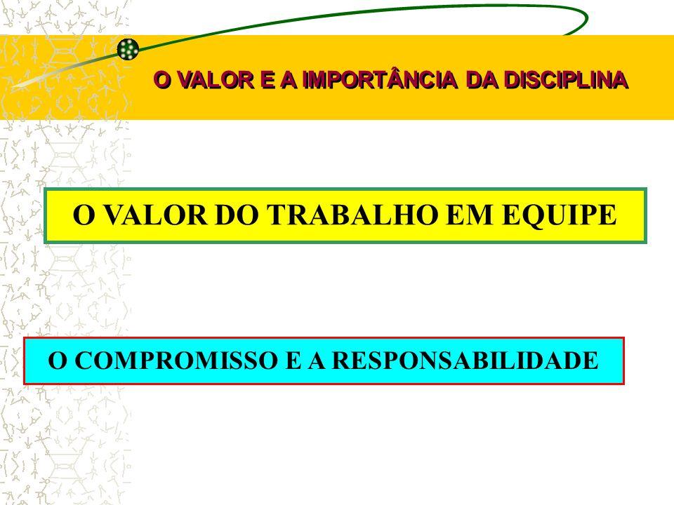 O VALOR DO TRABALHO EM EQUIPE O COMPROMISSO E A RESPONSABILIDADE