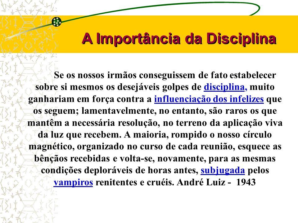 A Importância da Disciplina