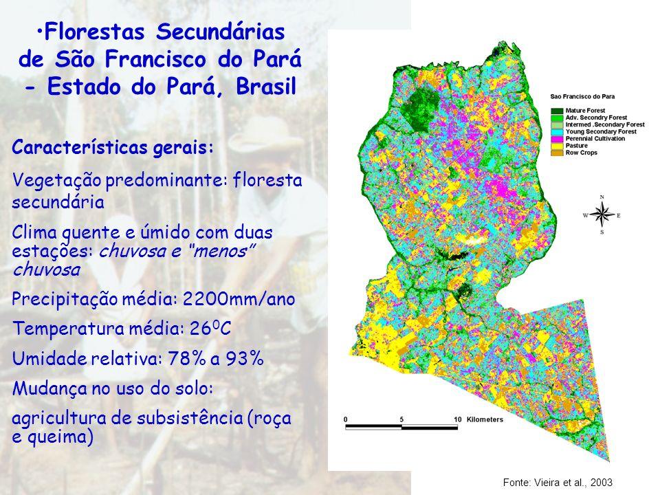 Florestas Secundárias de São Francisco do Pará - Estado do Pará, Brasil