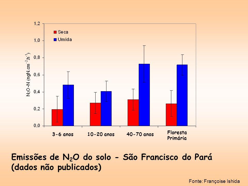 Emissões de N2O do solo - São Francisco do Pará (dados não publicados)