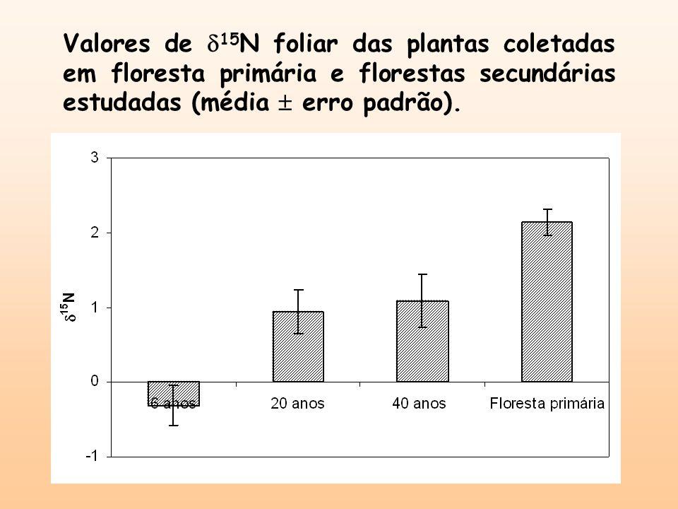 Valores de 15N foliar das plantas coletadas em floresta primária e florestas secundárias estudadas (média  erro padrão).